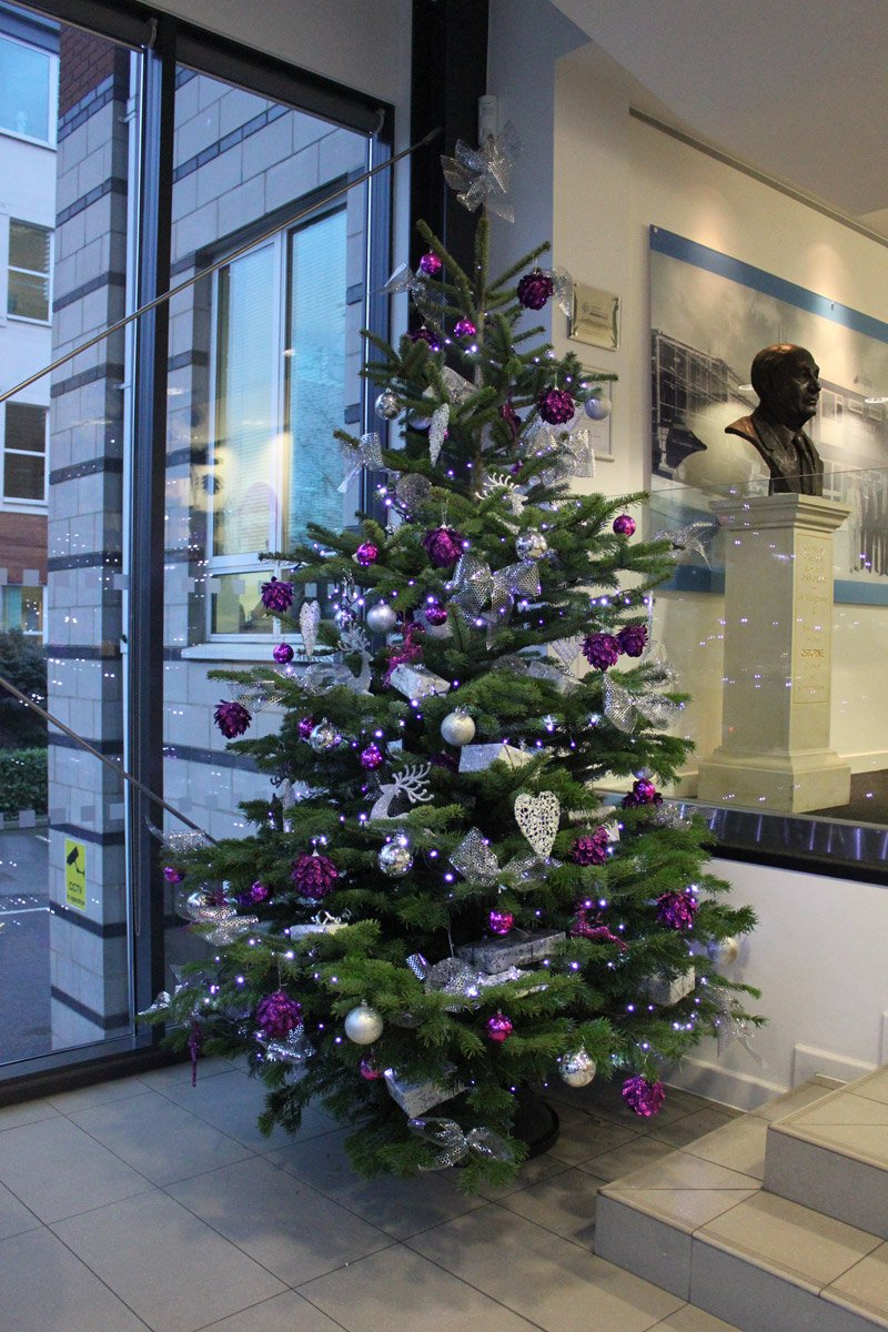Christmas Trees For Offices and Reception Areas