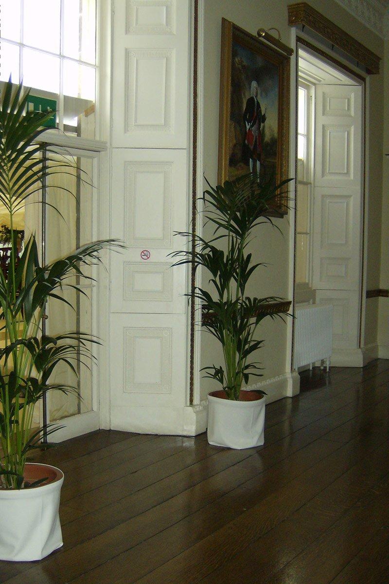 Short Term Plant Hire